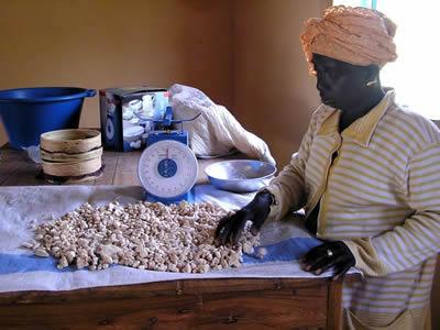 Baobab powder female processes baobab fruit kernels into a powder for sale in the senegalese capital dakar 725x544 1