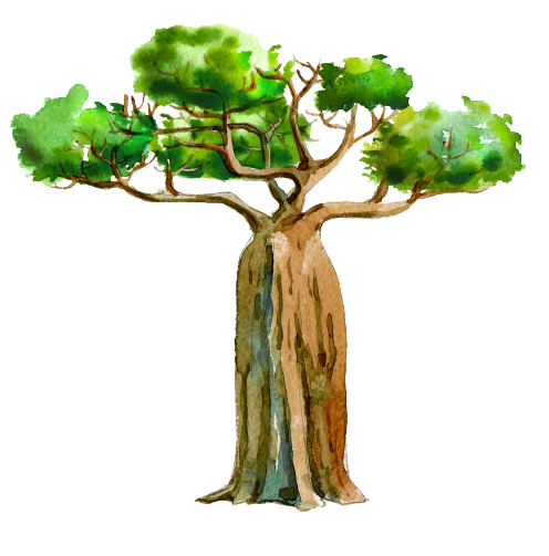 mighty baobab tree